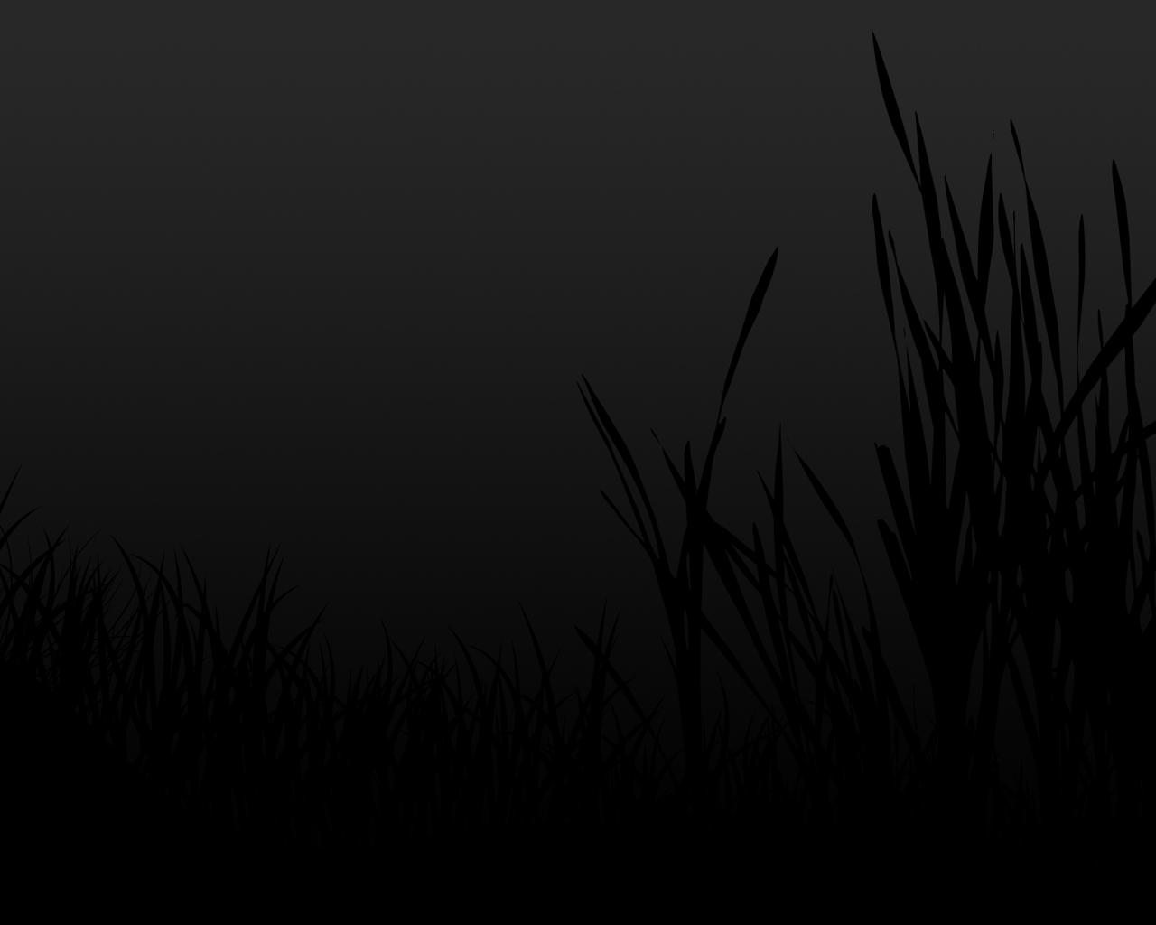 http://3.bp.blogspot.com/-HGfjigv3sB0/UICmNIIsdUI/AAAAAAAABhE/9rGWG-rrZnE/s1600/black+wallpaper+(1).jpg