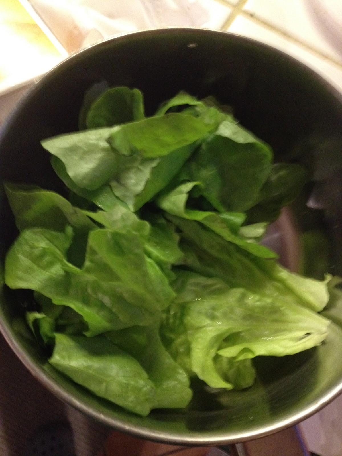 Coloranti alimentari naturali fatti in casa sanotint light tabella colori - Detersivi ecologici fatti in casa ...
