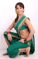Hot, sanjana, hot, navel, saree, pics