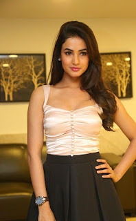 pandaga chesko movie heroine Sonal chauhan hot photos