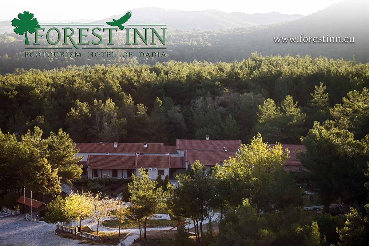 Official Sponsor: Forest Inn - Οικοτουριστικός Ξενώνας Δαδιάς