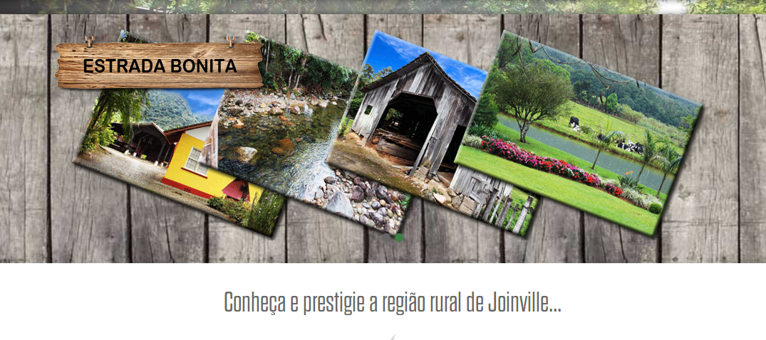 http://joinville.eco.br/#