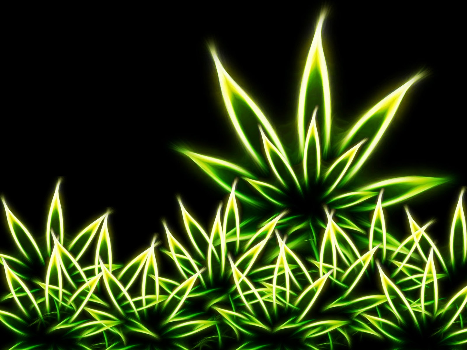 sweet weed backgrounds