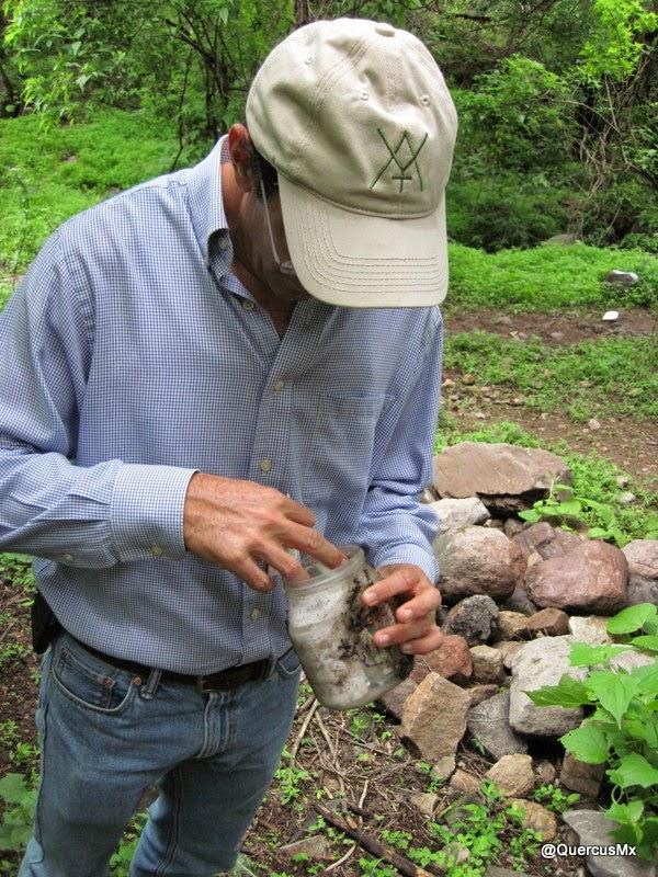 Geocache El Tepalo en Ajijic - Chapala