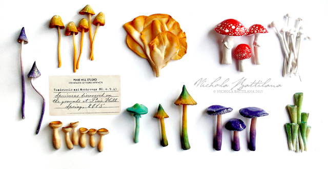 Fairy Mushrooms - Nichola Battilana