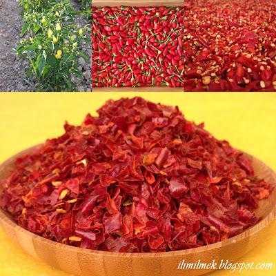 kırmızı pul biber