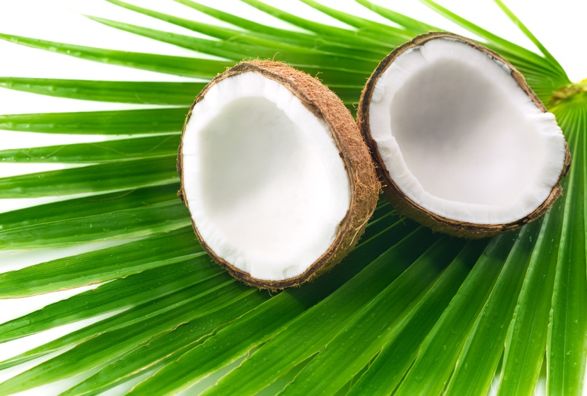 coconut a single fruit with million benefit health and