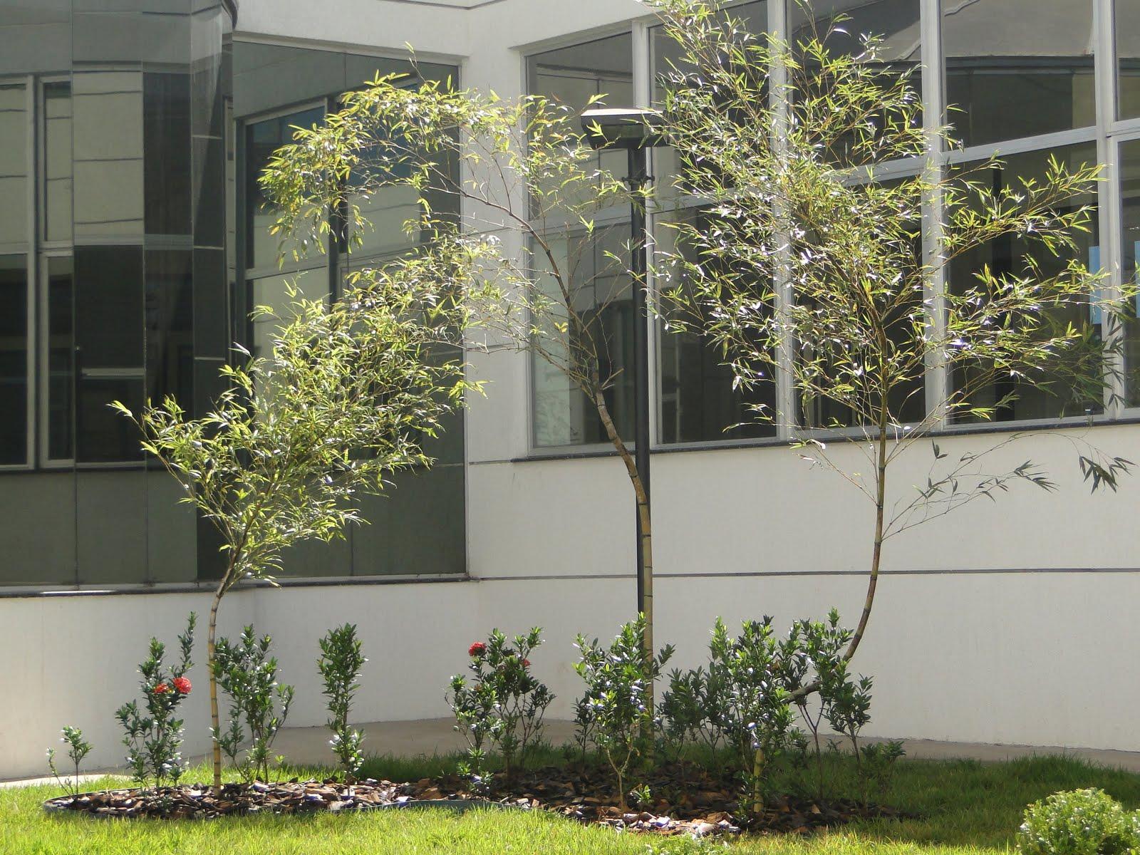 Casarim paisagismo by florestare jardim industrial for Jardin industrial