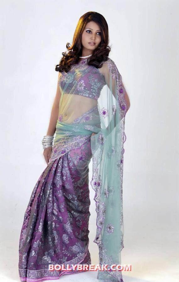 http://3.bp.blogspot.com/-HHnjtEQMEas/UClX1XHdgmI/AAAAAAAA7jc/BAJS47V31PY/s1600/Sandra-Jose-showing-off-her-gorgeous-body-in-a-Lilac-sari-with-a-transparent-pallu.jpg