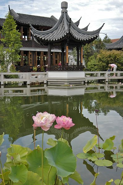 Never A Niche Travel Oregon Lan Su Chinese Garden Portland Oregon