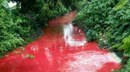 sungai berwarna darah