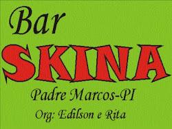 bar skina
