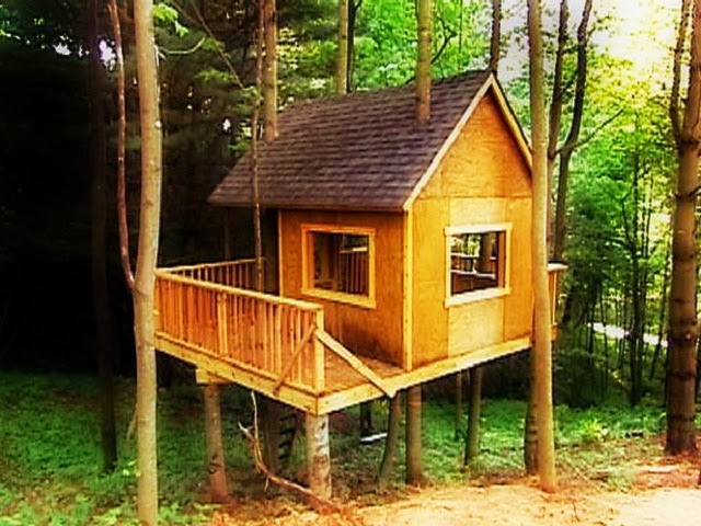 How to build a tree house ayanahouse for Treehouse designers