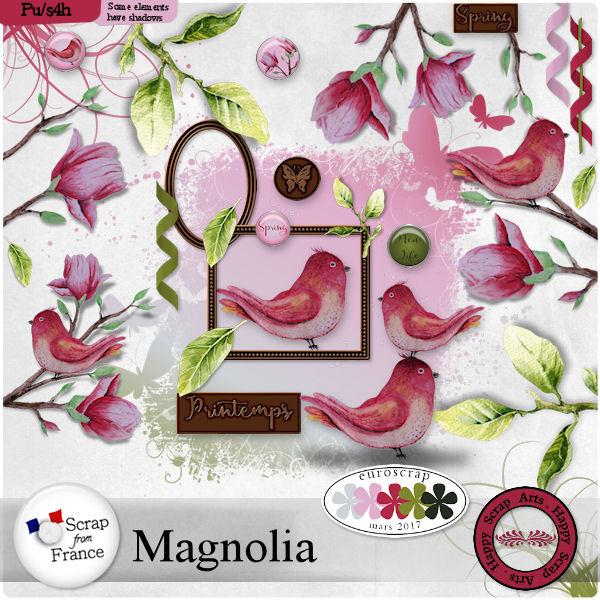 Maart 2017 HSA Magnolia