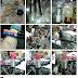 Instagram Belezaf5 com muitas novidades Beauty Fair 2012