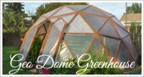 http://northernhomestead.com/category/geodome-greenhouse/