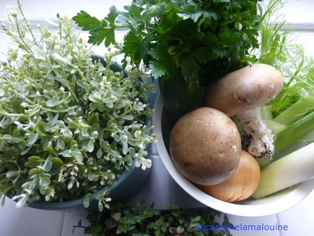 Carolinelamalouine cuisiner plus vert - Cuisiner le poivron vert ...