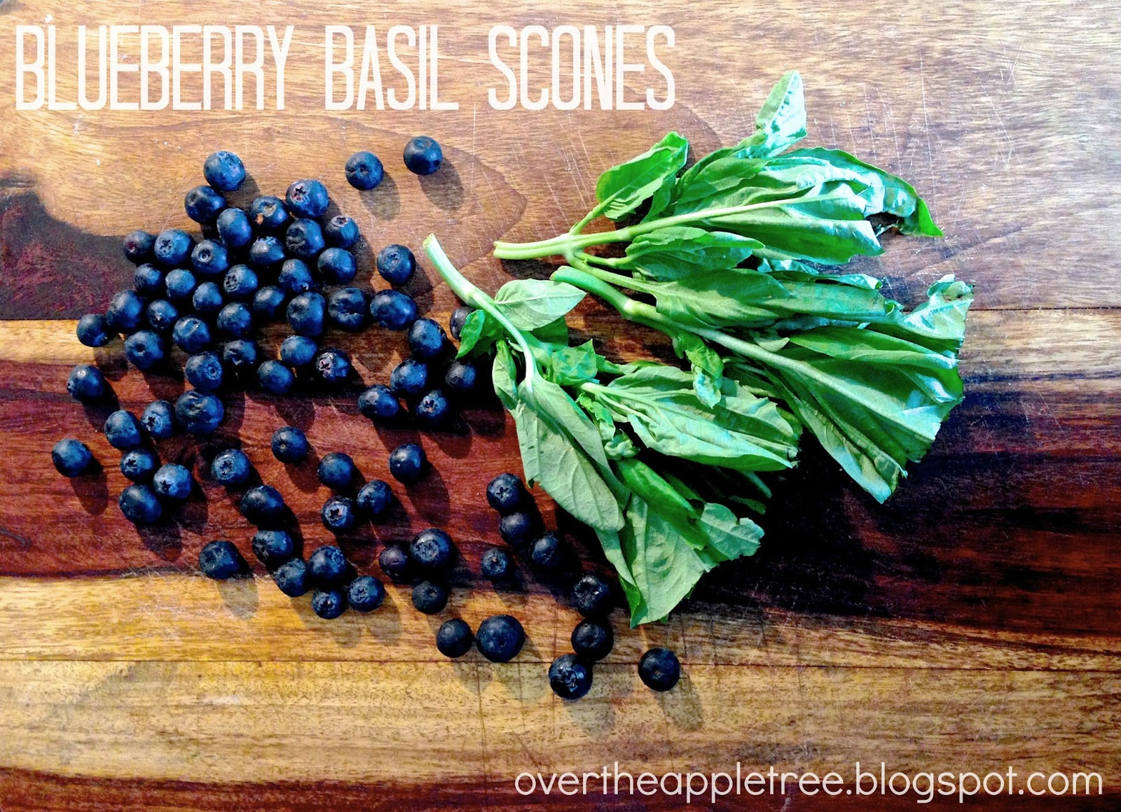 Blueberry Basil Scones, Over The Apple Tree