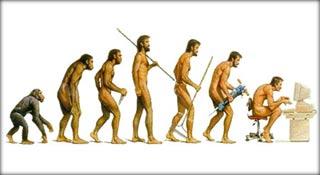 Bằng chứng tiến hóa