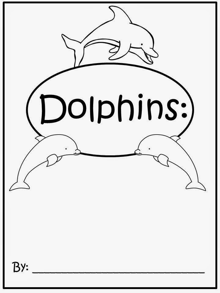 dolphin research paper