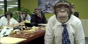 Varios monos trajeados en una oficina empresarial