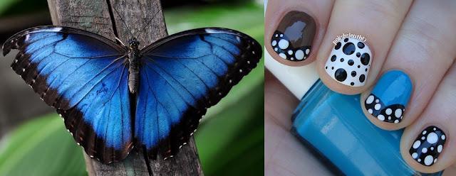 Blue Morpho Butterfly Dotticure