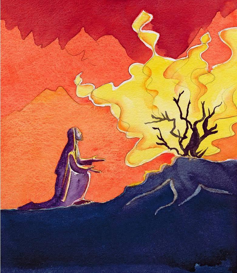 Pacific Beach Presbyterian Church Sermons The Burning