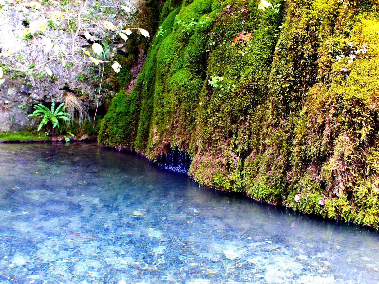 Märchenhafte Buch auf der Wanderroute Gütersteiner Wasserfälle