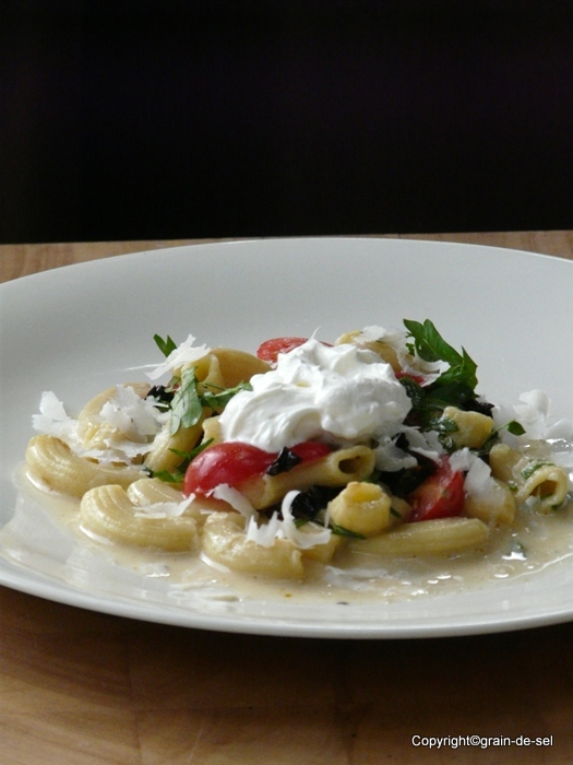 Kamut-Makkaroni in weißem Tomatenrahm | Salzkorn – meine Gartenküche