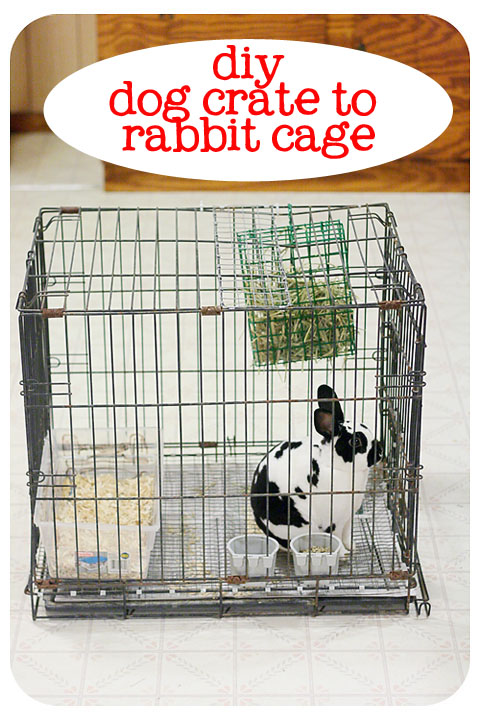 How to build a rabbit cage from a dog crate bull rock barn and home - How to make a rabbit cage ...