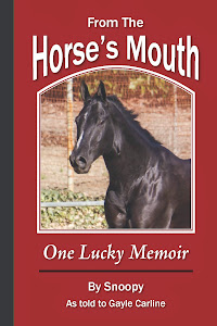 Gayle Carline--From The Horse's Mouth: One Lucky Memoir