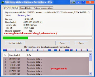 "Download ""Internet Download Manager"" Terbaru Full"