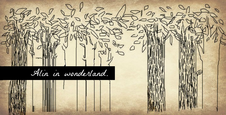 Alin in wonderland