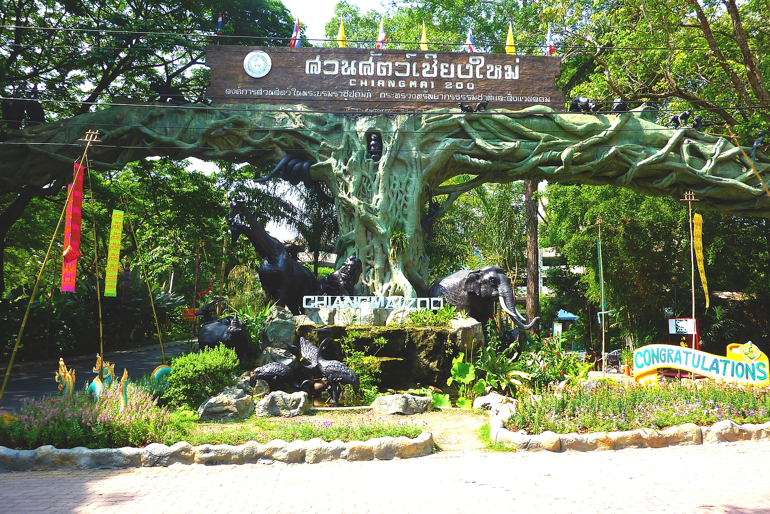 Chiang Mai Thailand  City pictures : thailand chiang mai chiang mai zoo thailand chiang mai chiang