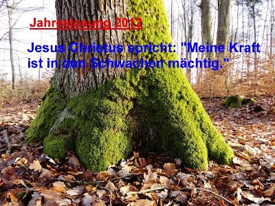 andys news gute w nsche f rs neue jahr. Black Bedroom Furniture Sets. Home Design Ideas