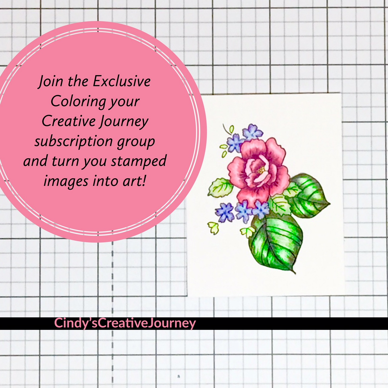 Coloring Your Creative Journey, an Exclusive Subscription Group