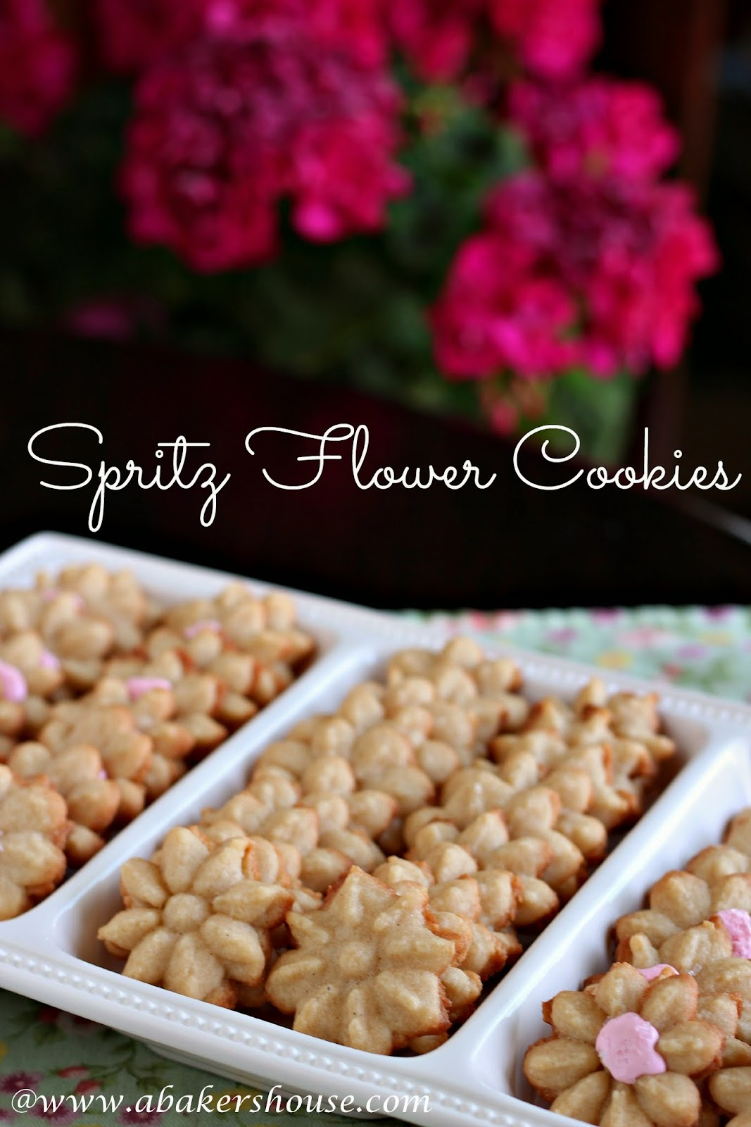 Spritz Flowers Cookies from Holly @www.abakershouse.com