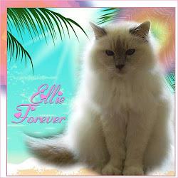 RIP ELLIE
