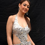 Preeti Jhangiani Super Sexy Skin Show In Telugu Movie 'Tejam' Item Song
