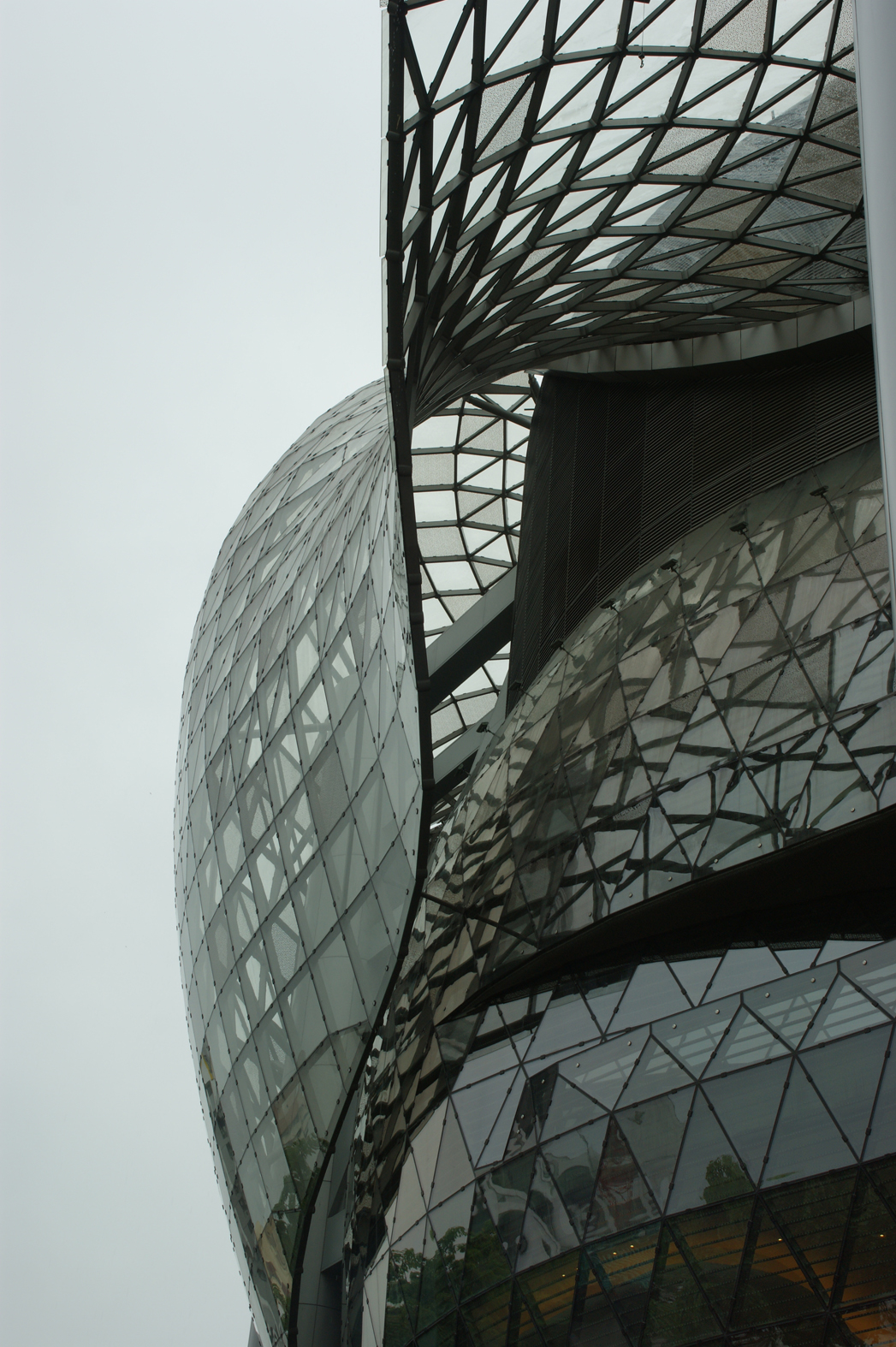 La piel en arquitectura for Que es arquitectura definicion