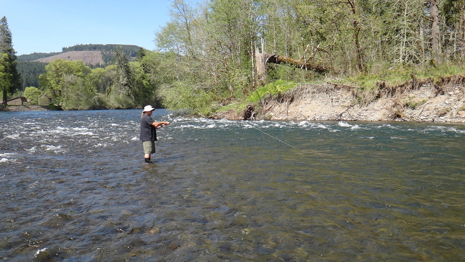 Brian marz 39 s fly fishing oregon blog end of april 2013 for Mckenzie river fishing