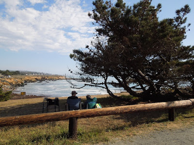 Looking Out at the Sea at Leffingwell Landing in Cambria, © B. Radisavljevic