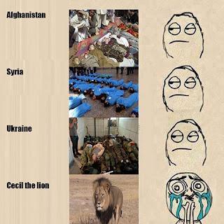 cecil-lion-sympathy-image