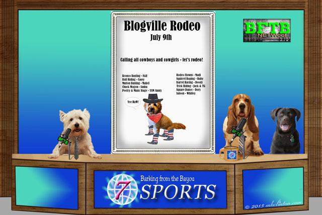 BFTB NETWoof Sports