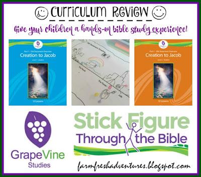 Grapevine Studies: Bible Curriculum Review