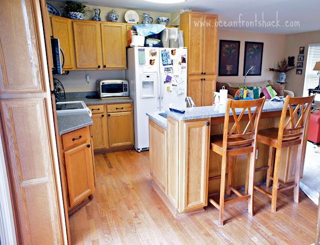 Painting kitchen cabinets in one day for Kitchen cabinets 4 less