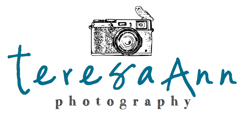 teresa ann photography