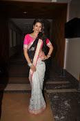 Shaddha das glamorous photos in saree-thumbnail-5
