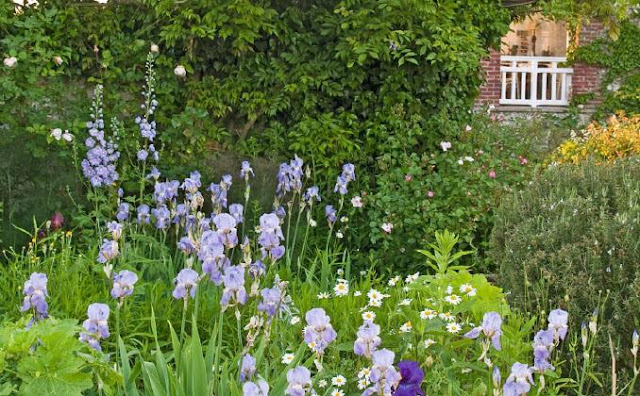 Beautiful Country Cottage Garden in France