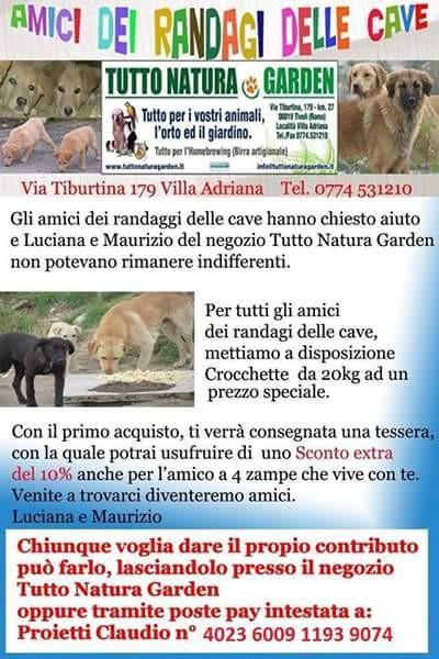 Aiuta i randagi delle Cave a Tivoli